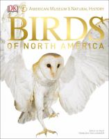 Cover image for American Museum of Natural History Birds of North America
