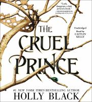 Cover image for The cruel prince