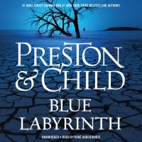 Cover image for Blue labyrinth