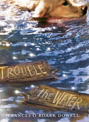Cover image for Trouble the water