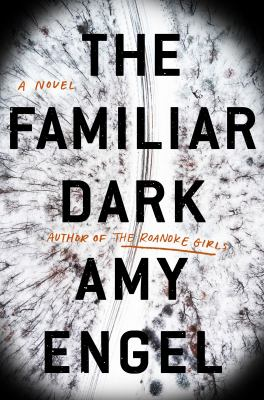 Cover image for The familiar dark : a novel