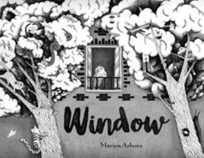 Cover image for Window