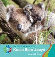 Cover image for Koala bear joeys
