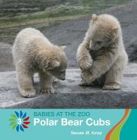 Cover image for Polar bear cubs