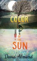 Cover image for The color of the sun