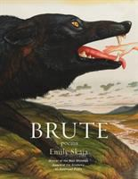Cover image for Brute : poems