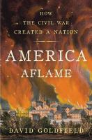 Cover image for America aflame : how the Civil War created a nation