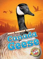 Cover image for Canada geese