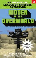 Cover image for Hidden in the overworld