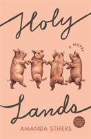 Cover image for Holy lands : a novel