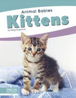 Cover image for Kittens