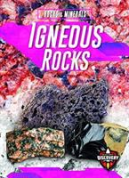 Cover image for Igneous rocks