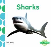 Cover image for Sharks