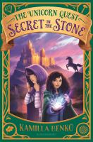 Cover image for Secret in the stone