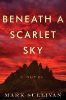 Cover image for Beneath a scarlet sky