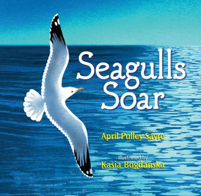 Cover image for Seagulls soar