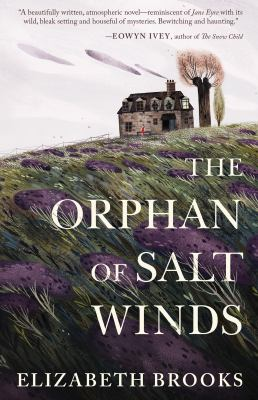 Cover image for The orphan of Salt Winds