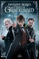Cover image for Fantastic beasts : the crimes of Grindelwald