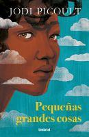 Cover image for Pequeñas grandes cosas