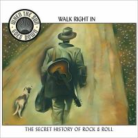 Cover image for When the sun goes down, part 1 : walk right in : the secret history of rock & roll.