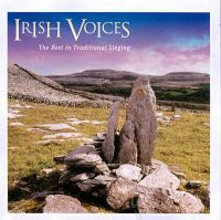 Cover image for Irish voices
