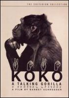 Cover image for Koko, a talking gorilla