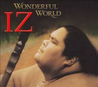 Cover image for Wonderful world