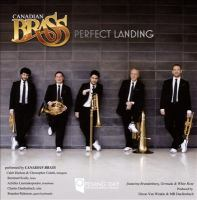 Cover image for Perfect landing