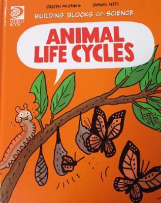 Animal Life Cycles by Joseph Midthun