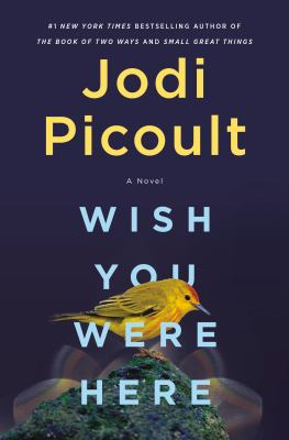 Wish You Were Here by Jodi Picoult