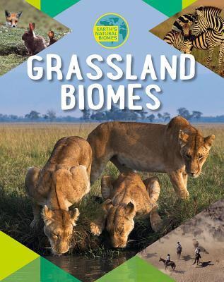 Grassland biomes by Louise Spilsbury