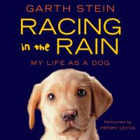 Cover image for Racing in the rain my life as a dog