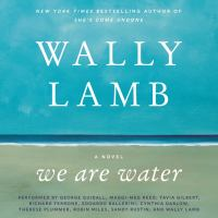 Cover image for We are water