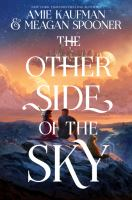 Cover image for The other side of the sky