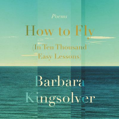 Cover image for How to fly (in ten thousand easy lessons)