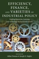 Cover image for Efficiency, finance, and varieties of industrial policy  guiding resources, learning and technology for sustained growth