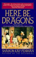 Cover image for Here be dragons