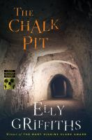 Cover image for The chalk pit