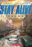 Imagen de portada para Flood