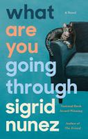 Cover image for What are you going through
