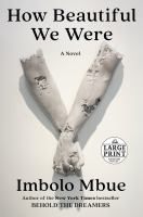 Cover image for How beautiful we were