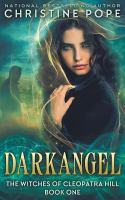 Cover image for Darkangel