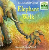 Cover image for Elephant walk