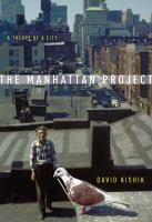 Cover image for The Manhattan project  a theory of a city