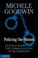 Cover image for Policing the womb : invisible women and the criminalization of motherhood