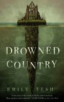 Cover image for Drowned country