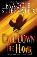 Cover image for Call down the hawk