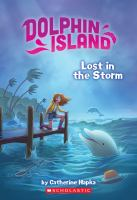 Cover image for Lost in the storm