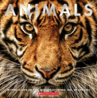 Cover image for Animals : witness life in the wild featuring 100s of species