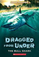 Cover image for The bull shark